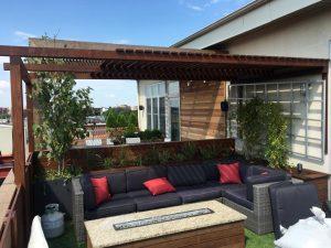 thiết kế vườn rau sân thượng 5