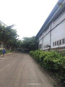 khảo sát nhà máy mdf - gỗ mdf
