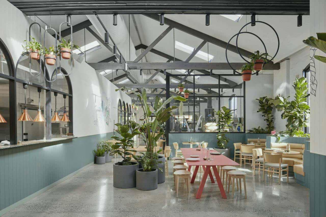 không gian xanh ngát cafe phong cách Scandinavian