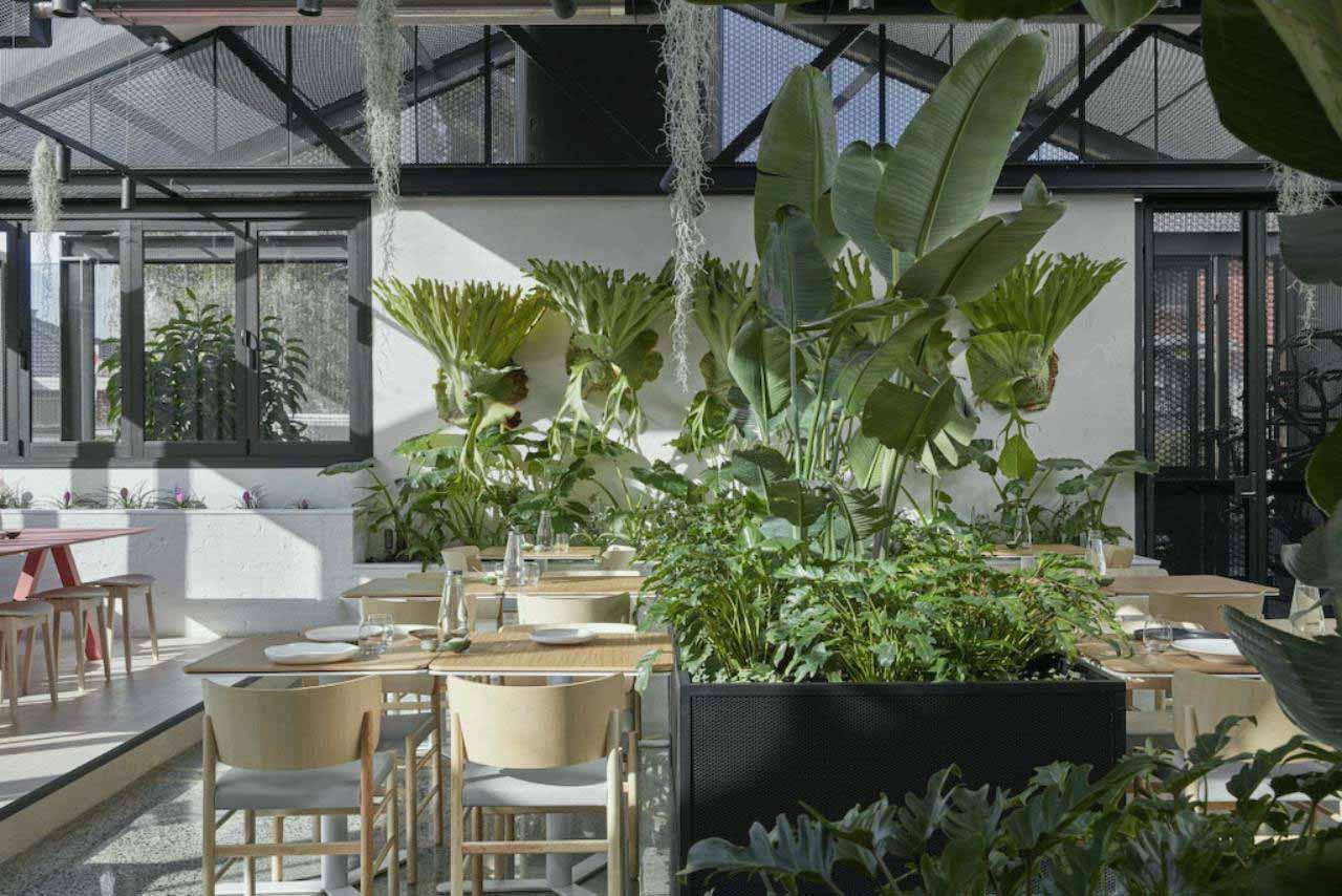 nội thất đơn giản quán cafe phong cách Scandinavian